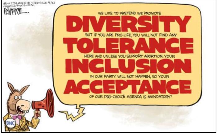 Dem-diversity