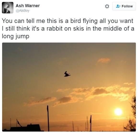 Rabbit Ski