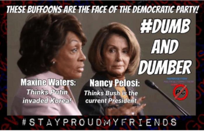Maxine_Pelosi_dumb