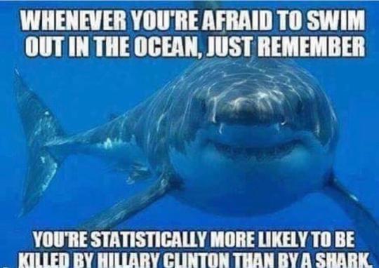 Hitlery-shark