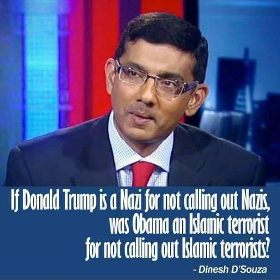 D'Souza-Trump