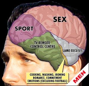 man_brain