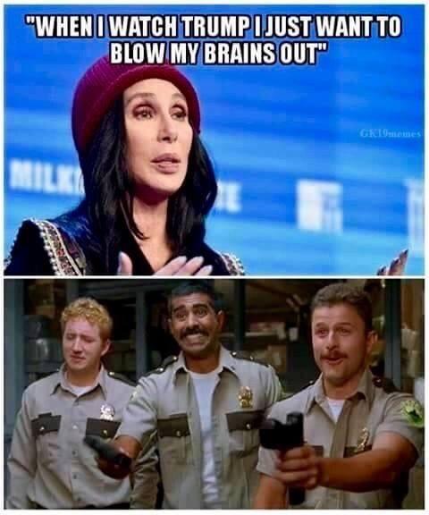 cher-brains