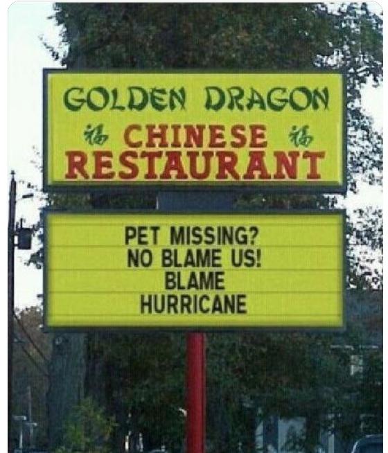 Pet_Missing