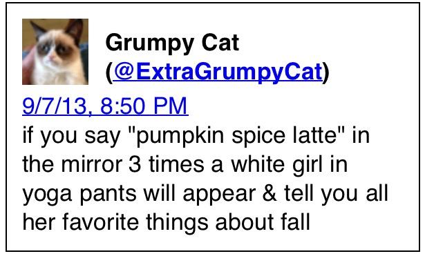 Pumpkin Spice Grumpy Cat