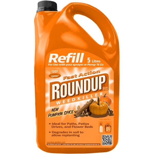 pumpkin spice-roundup