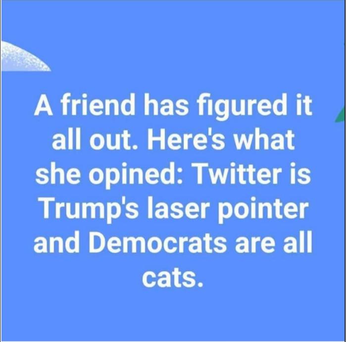 Trump_Twitter_Laser