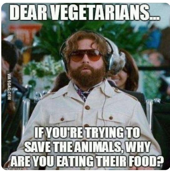 Vegetarians_Animals_food