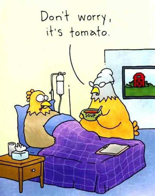 chicken-tomato-soup