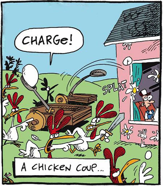 Chicken_coup