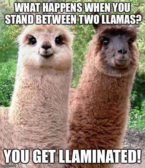 Llamanated