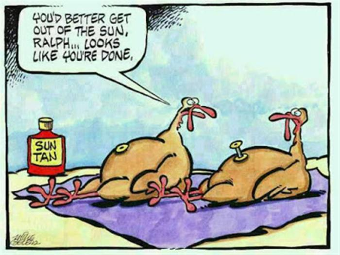 Thanksgiving Turkey Sun Done
