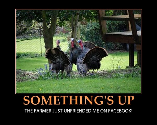 thanksgiving-unfriended on Facebook