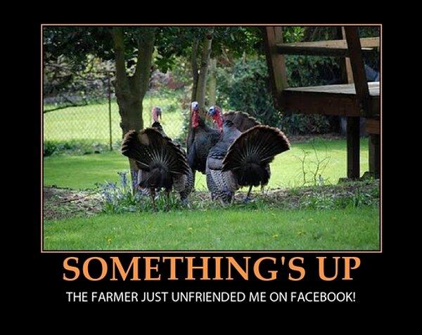 thanksgiving-unfriended on Facebook