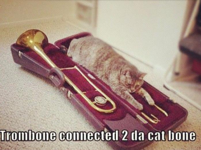 Trombone-Cat Bone