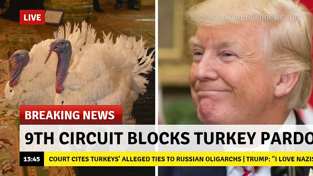 Turkey-pardon