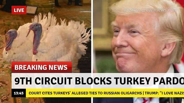 Turkey-pardon