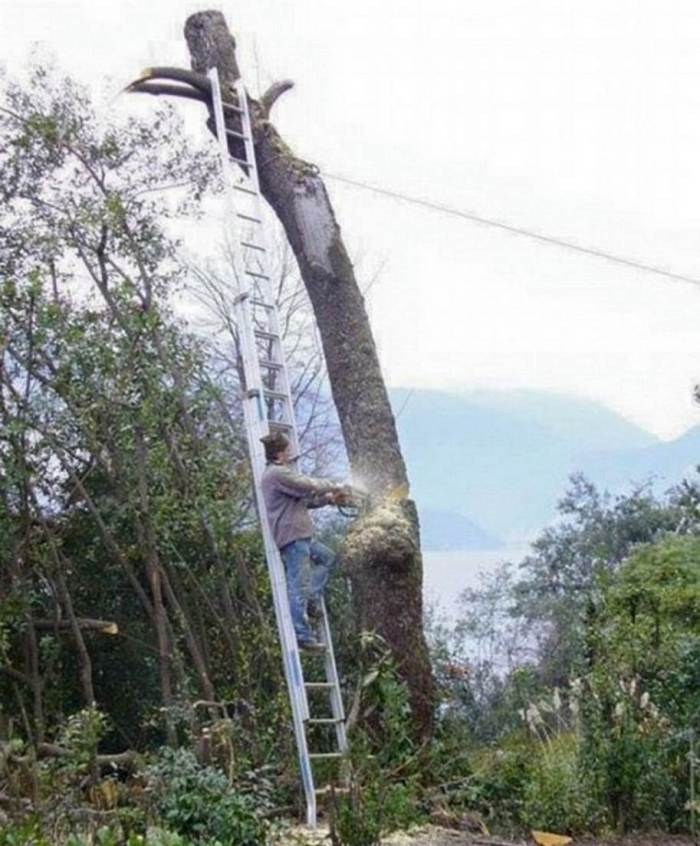 Why Women Live Longer-chain saw
