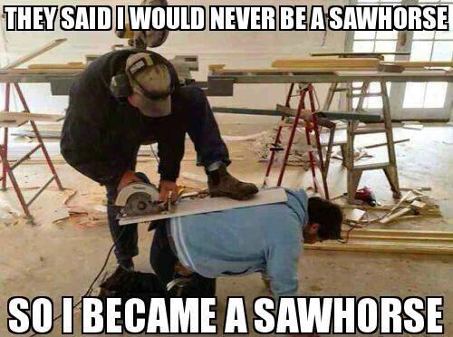 WWLLTM-sawhorse