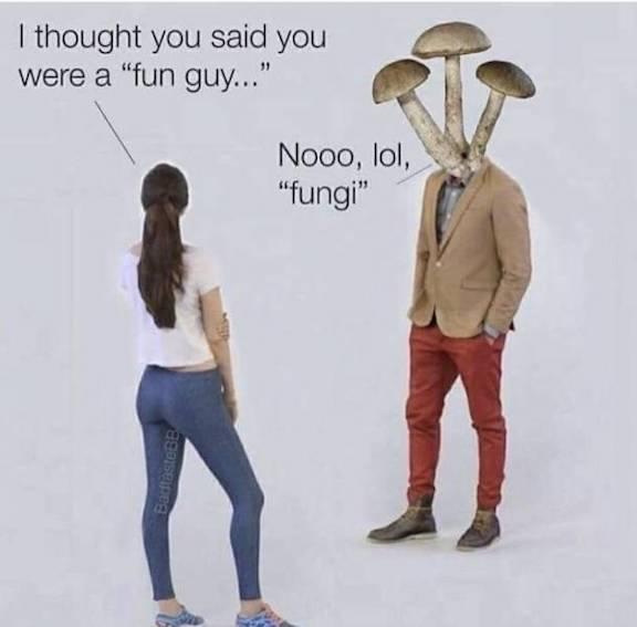Fun guy-fungi