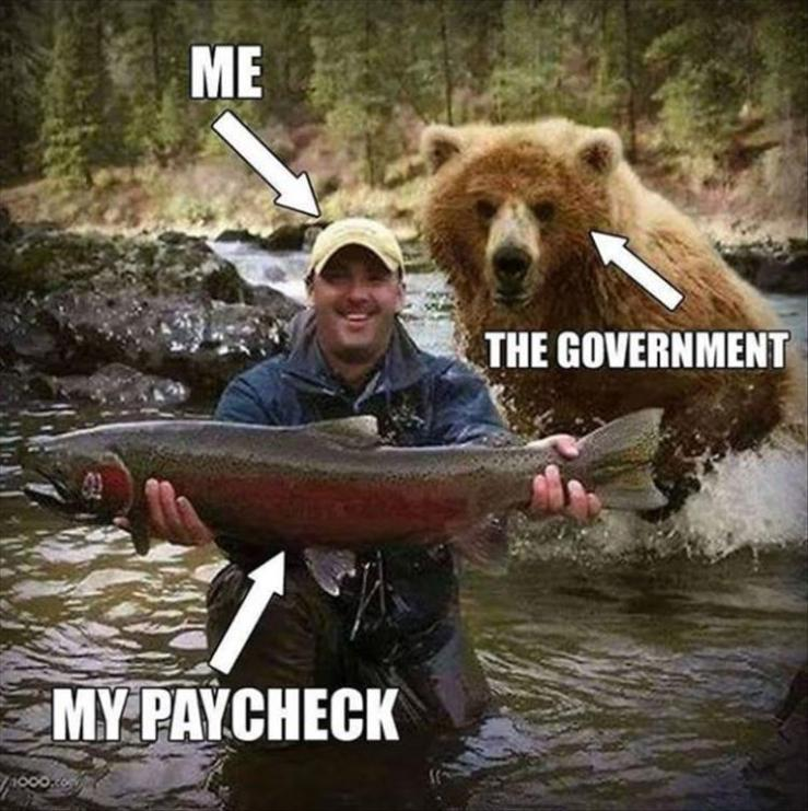 my-paycheck
