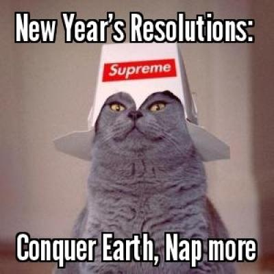 New-Year-Conquer