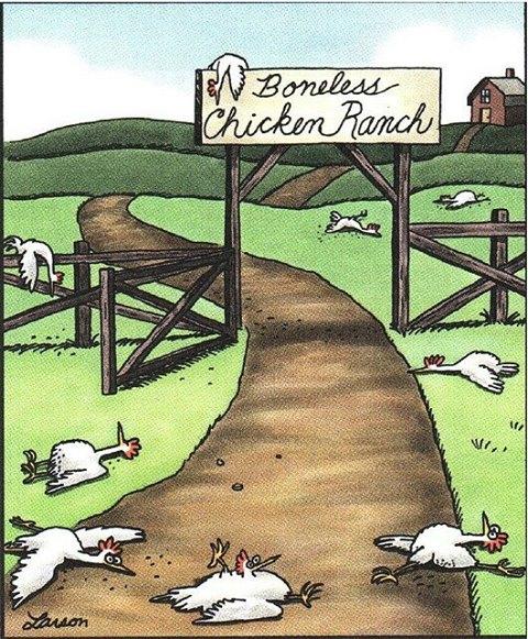 Boneless Chicken Ranch