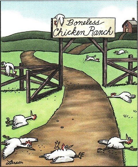 Boneless Chicken Ranch