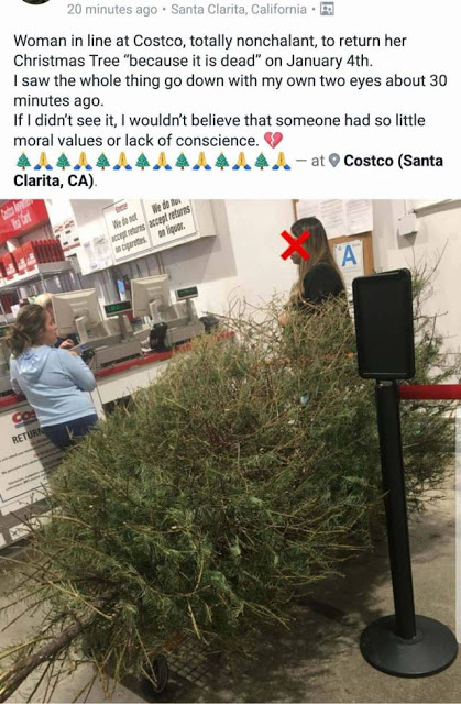 Costco x-mas tree