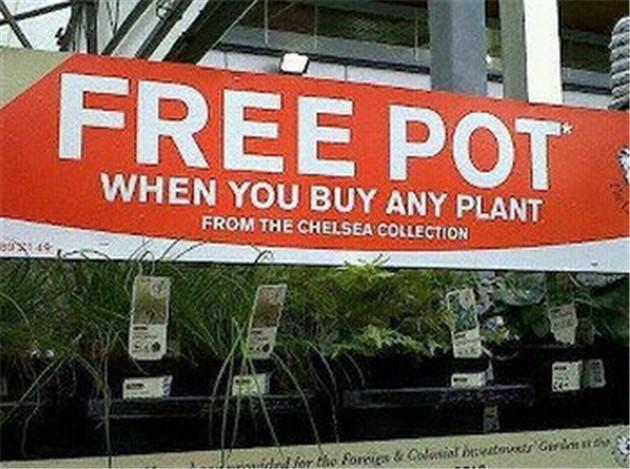 Free Pot