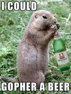 Gopher_a_beer