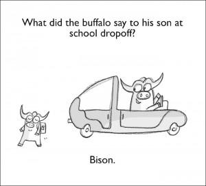 Groaner-bison