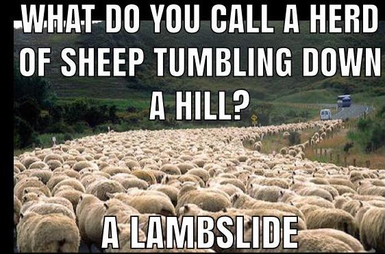 Lambslide