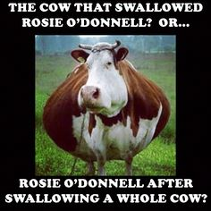 Rosie-O'Donnell-cow