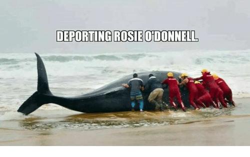 rosie-odonnell-deporting