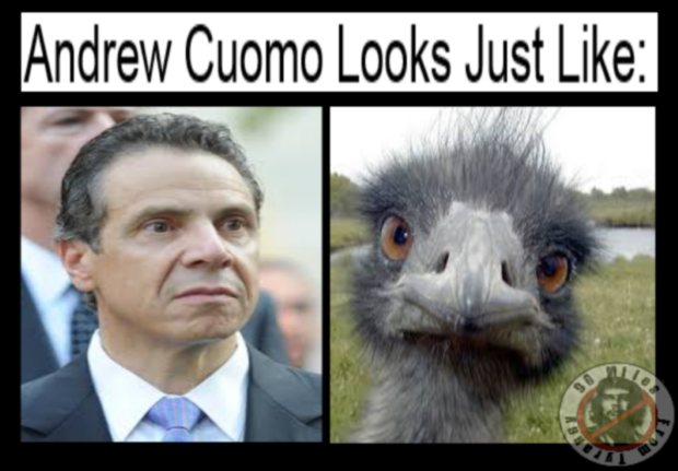 Separated at Birth-cuomo