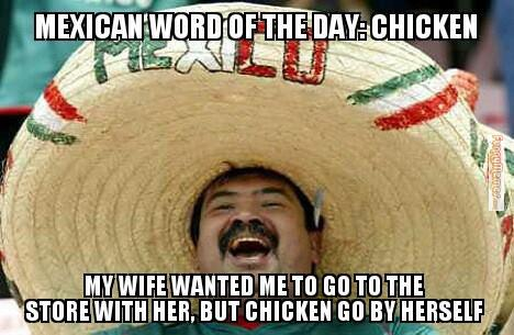 MWOTD-chicken