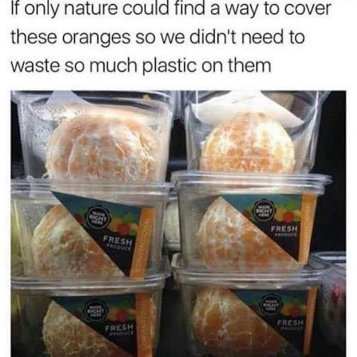 YJCMTSU--oranges
