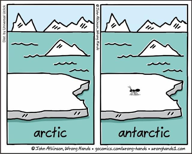 Arctic-Antarctic