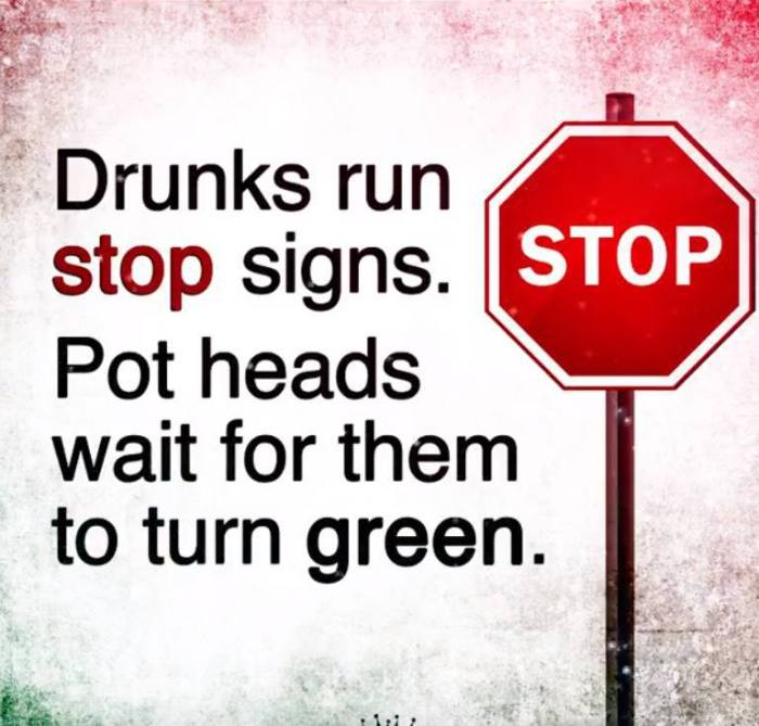 Drunks-run-stop-signs...