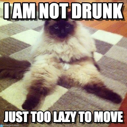 I-am-not-drunk
