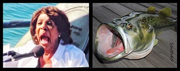 Maxine-Separated at Birth