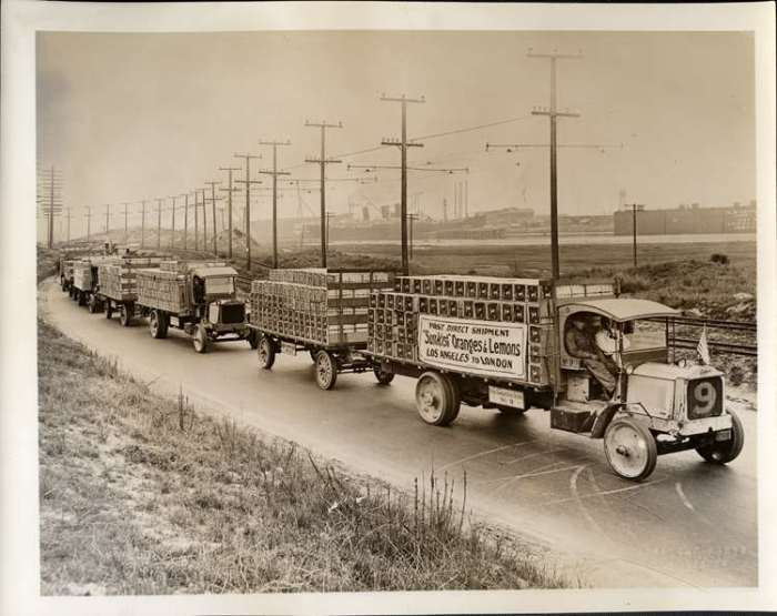 Packard trucks hauling citrus