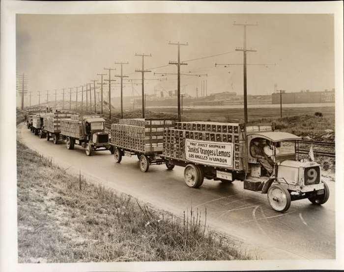 Packard trucks hauling citrus