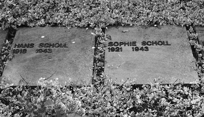 Scholl-graves