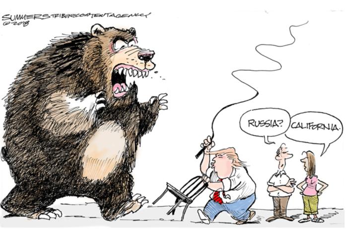 Trump-bear-CA