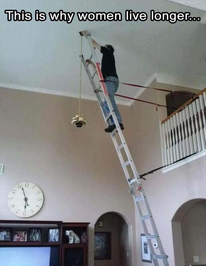 WWLLTM-ladder