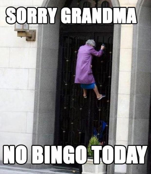 granny-no-bingo-today