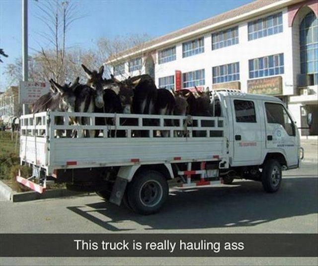 Hauling ass