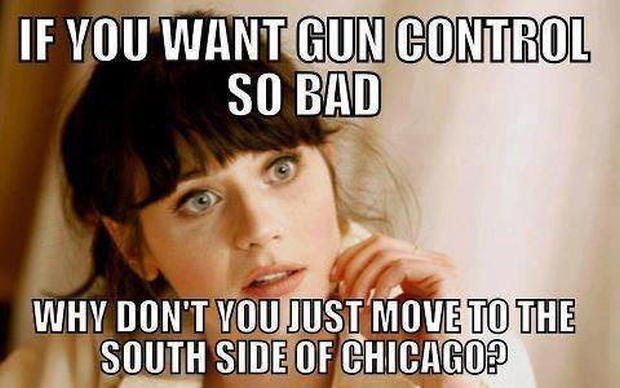 if-you-want-gun-control-so-bad-why-dont-you-just-move-to-the-south-side-of-chicago